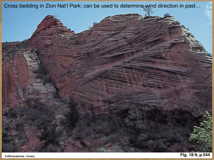 Cross bedding in Zion Nat'l Park: can be used to determine wind direction in past…