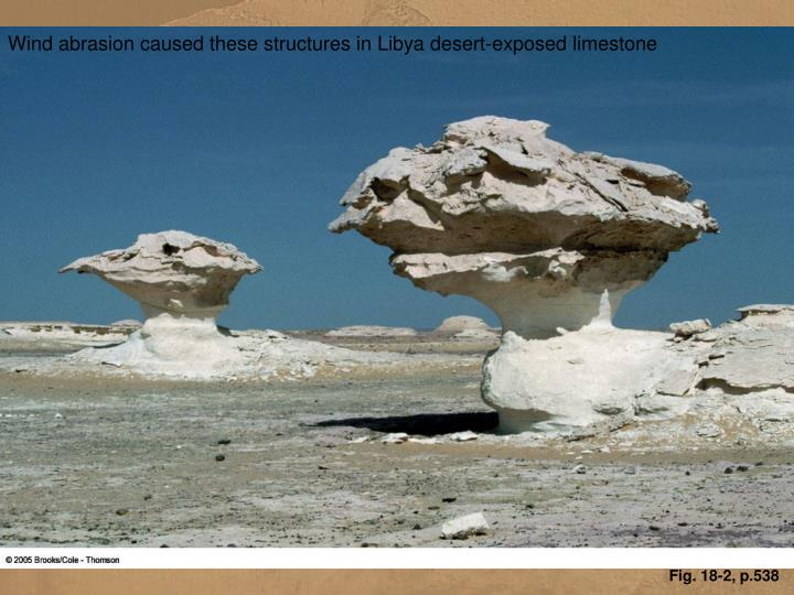 Wind abrasion caused these structures in Libya desert-exposed limestone