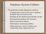 database system utilities