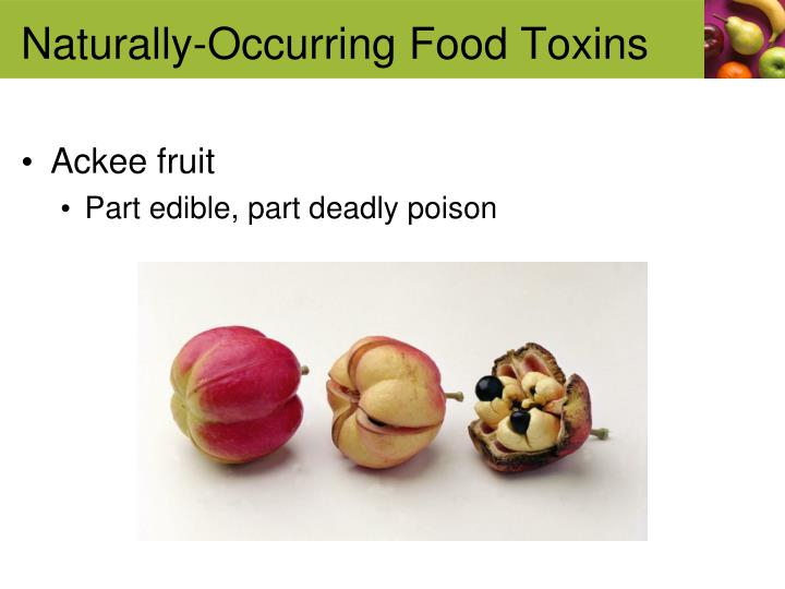 Naturally-Occurring Food Toxins