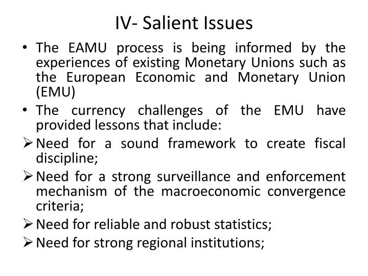 IV- Salient Issues
