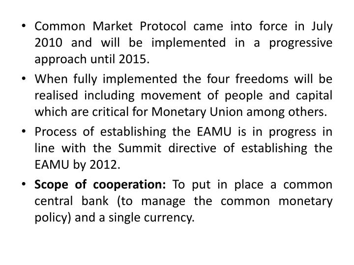 Common Market Protocol came into force in July 2010 and will be implemented in a progressive approach until 2015.