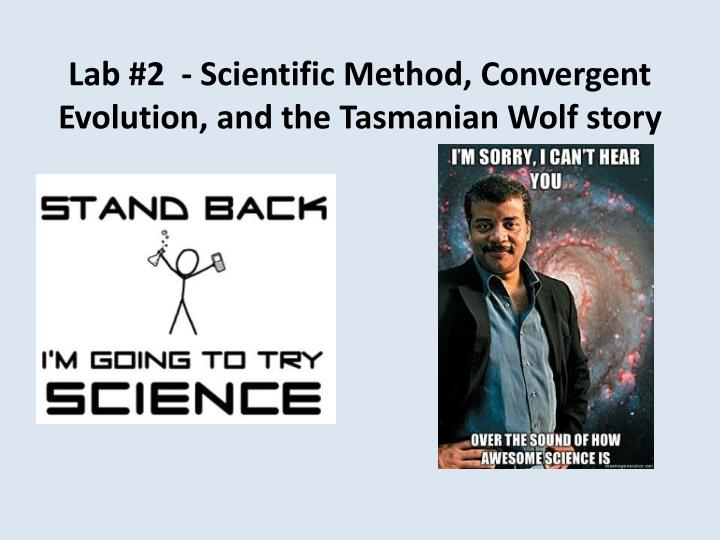 Lab #2  - Scientific Method, Convergent Evolution, and the Tasmanian Wolf story