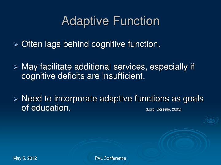 Adaptive Function