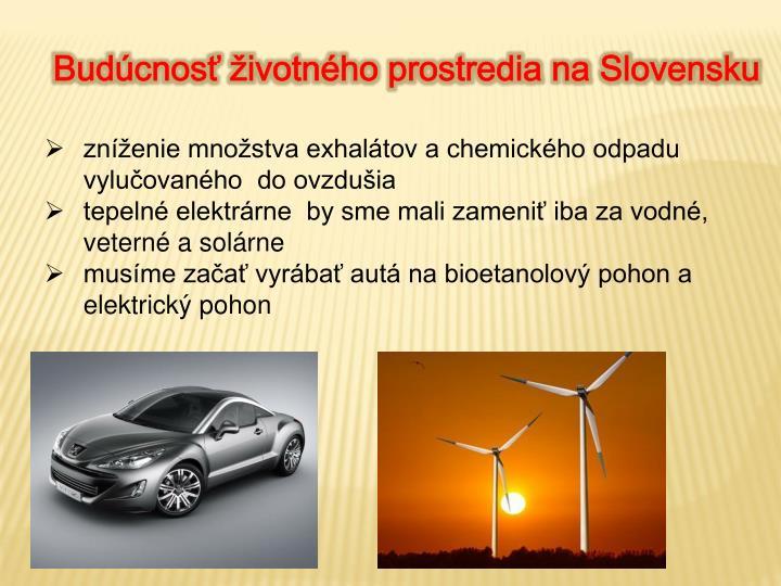 Budúcnosť životného prostredia na Slovensku