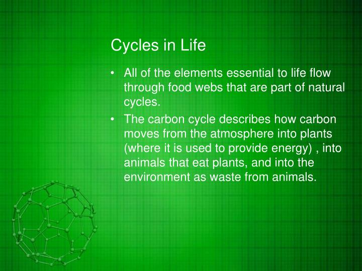 Cycles in life