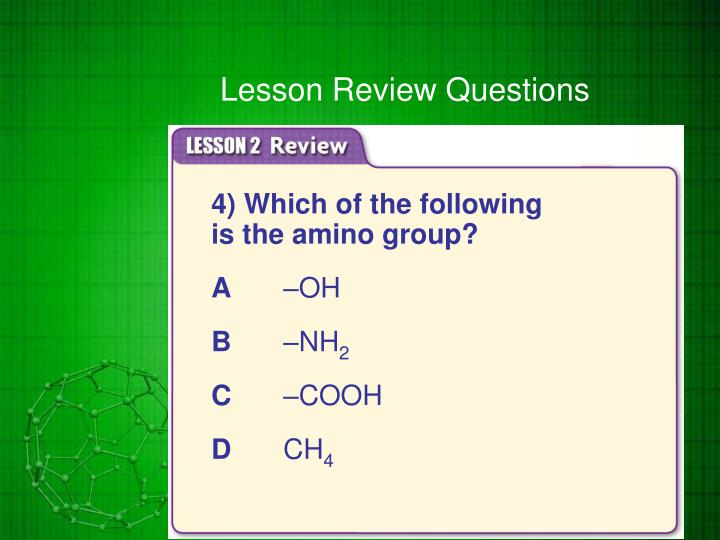 Lesson Review Questions