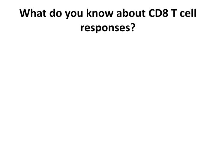 What do you know about CD8 T cell responses?