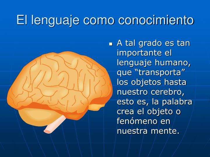 El lenguaje como conocimiento