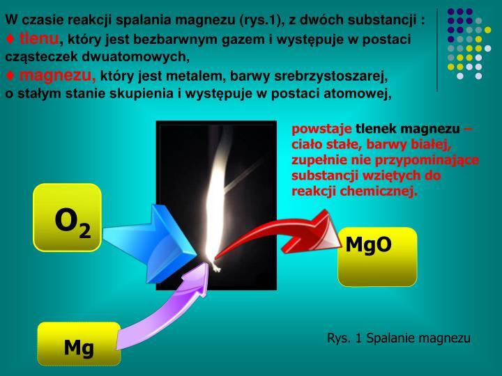 W czasie reakcji spalania magnezu (rys.1), z dwóch substancji :