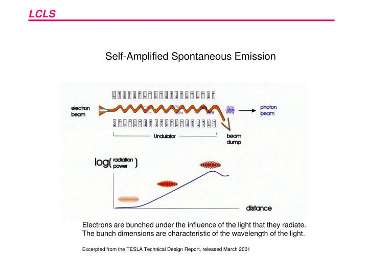 Self-Amplified Spontaneous Emission