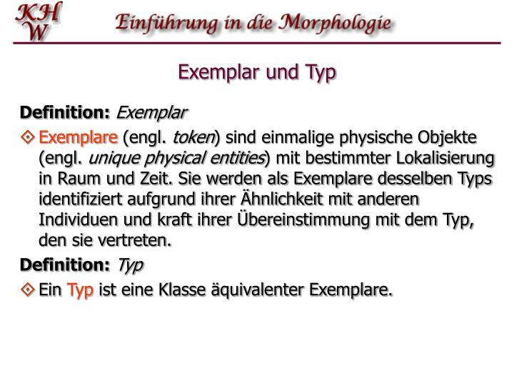 Exemplar und Typ
