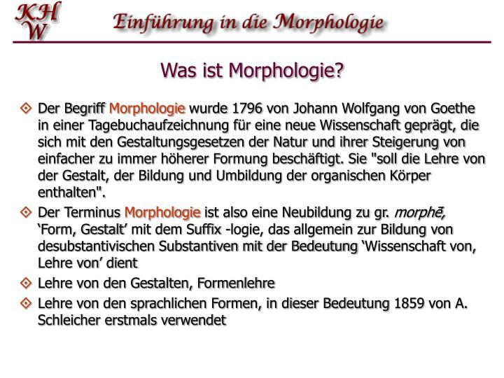 Was ist Morphologie?