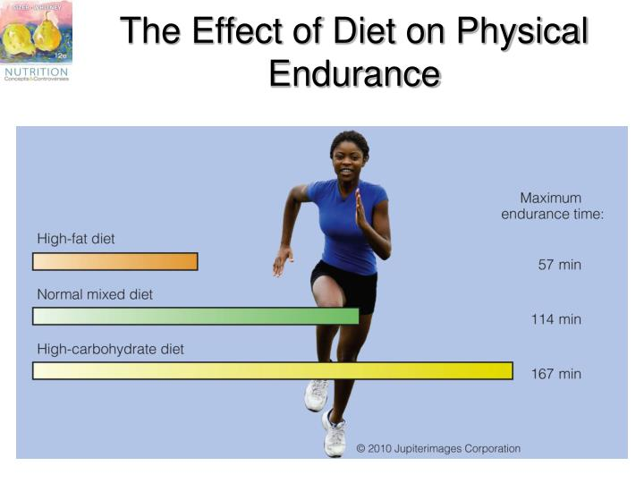 The Effect of Diet on Physical Endurance