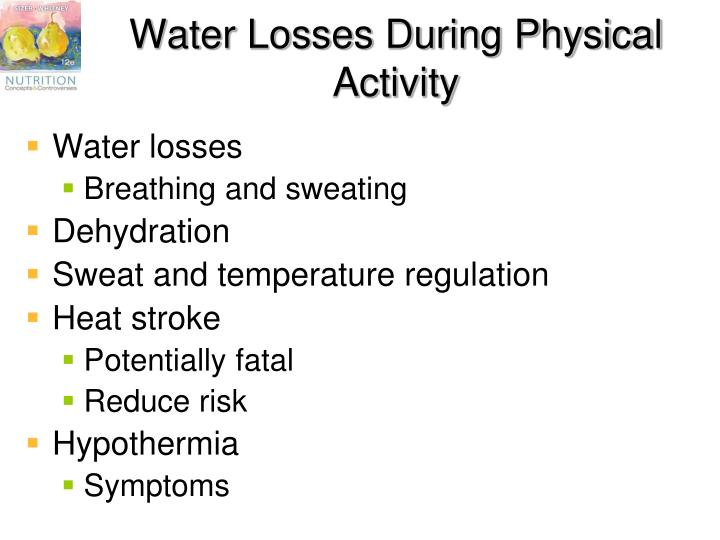 Water Losses During Physical Activity