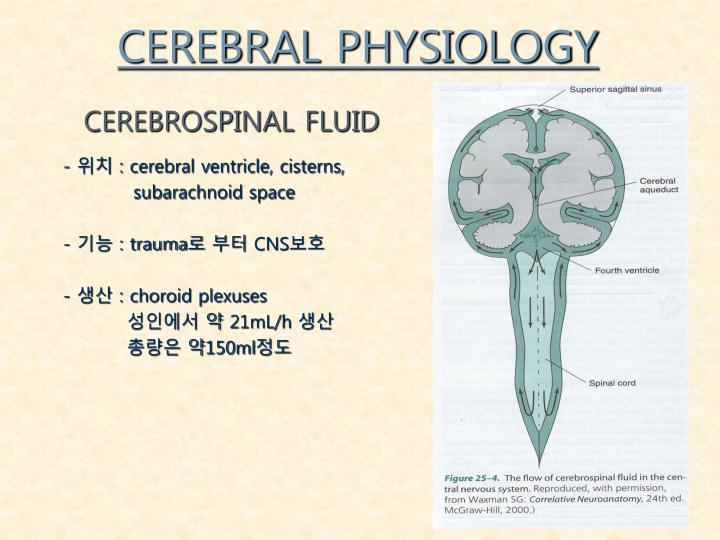 CEREBRAL PHYSIOLOGY