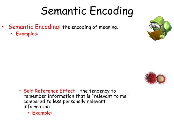 Semantic Encoding