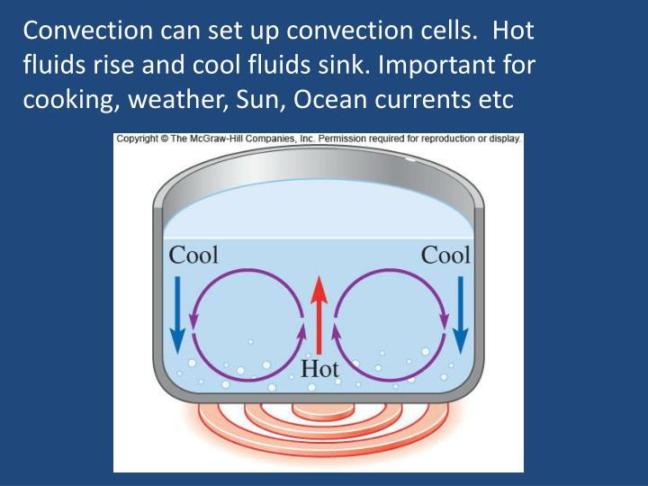 Convection can set up convection cells.  Hot fluids rise and cool fluids sink. Important for cooking, weather, Sun, Ocean currents etc