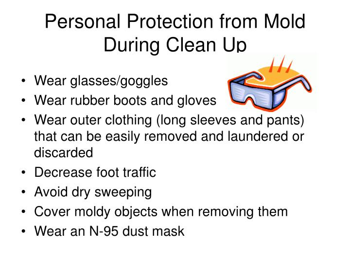 Personal Protection from Mold During Clean Up