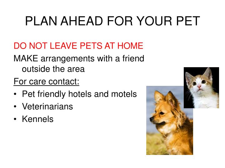 PLAN AHEAD FOR YOUR PET
