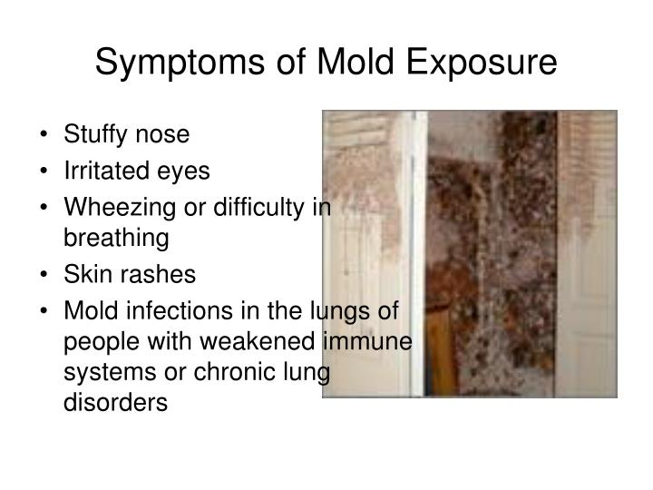 Symptoms of Mold Exposure