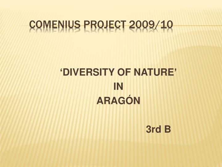 Comenius project 2009 10