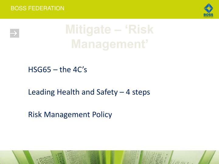 Mitigate – 'Risk Management'