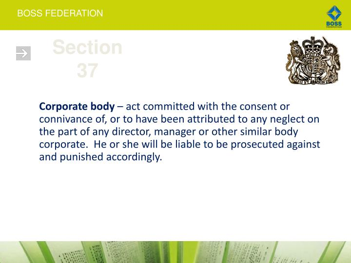 Section 37