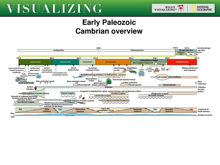 Early paleozoic cambrian overview