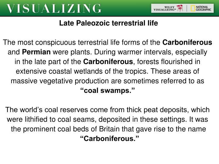Late Paleozoic terrestrial life