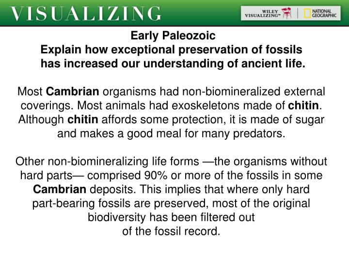 Early Paleozoic
