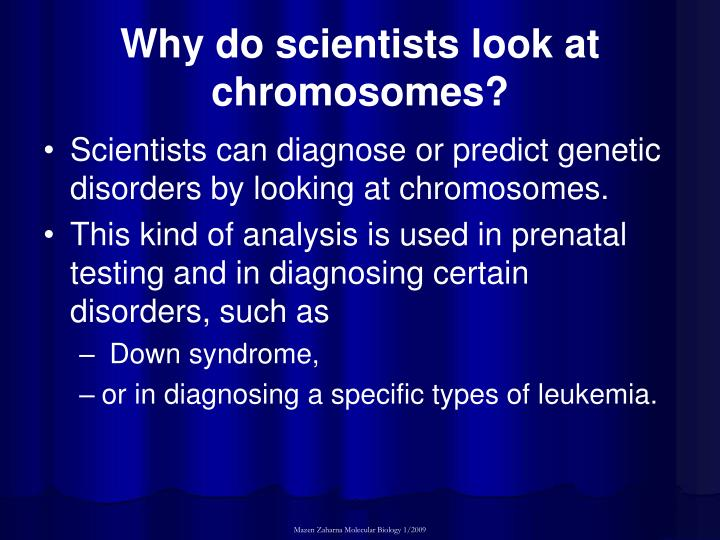 Why do scientists look at chromosomes?