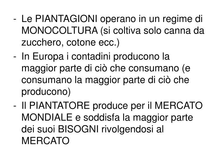 Le PIANTAGIONI operano in un regime di MONOCOLTURA (si coltiva solo canna da zucchero, cotone ecc.)