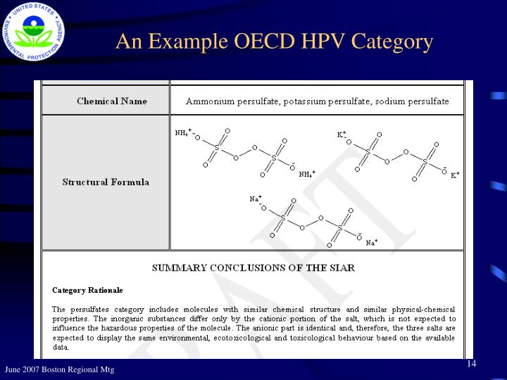 An Example OECD HPV Category