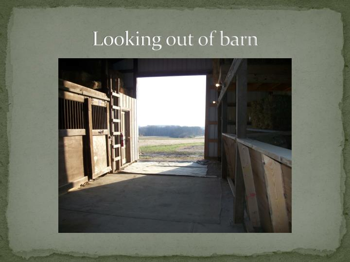 Looking out of barn
