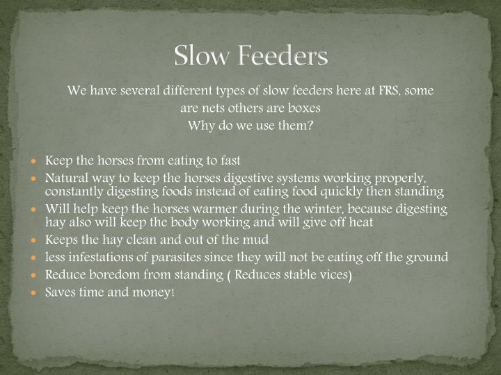 Slow Feeders