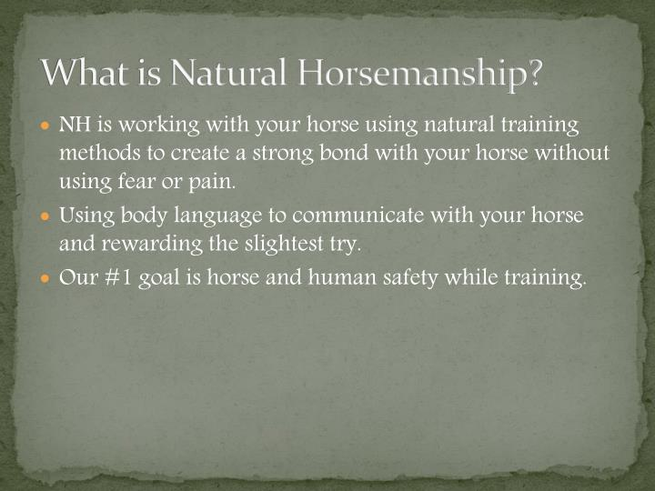 What is natural horsemanship