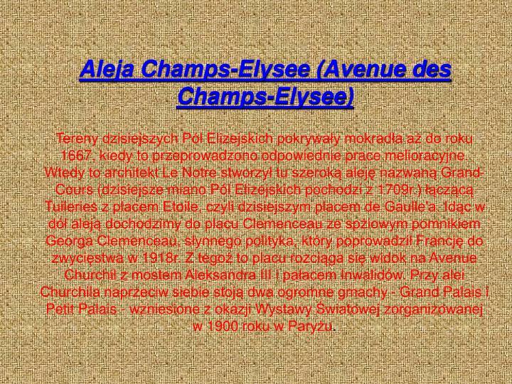 Aleja Champs-Elysee (Avenue des Champs-Elysee)