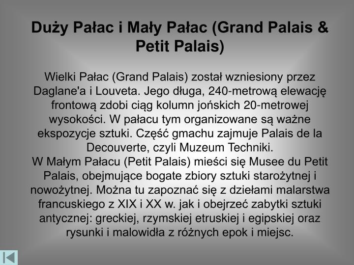 Duży Pałac i Mały Pałac (Grand Palais & Petit Palais)