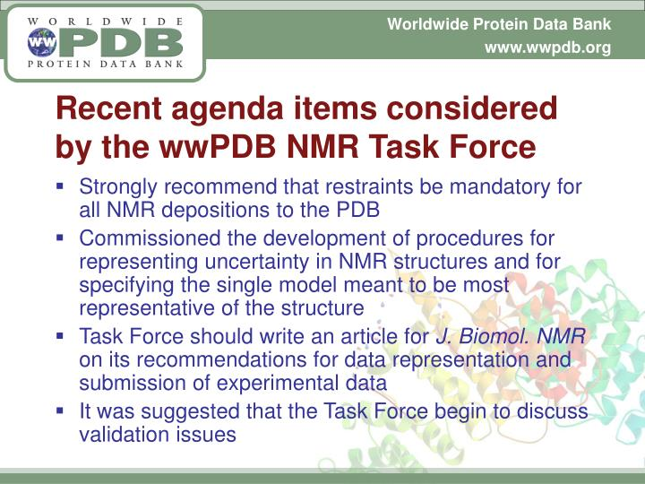Recent agenda items considered by the wwPDB NMR Task Force