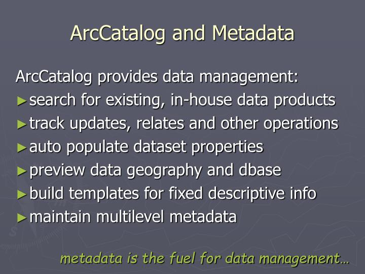 ArcCatalog and Metadata