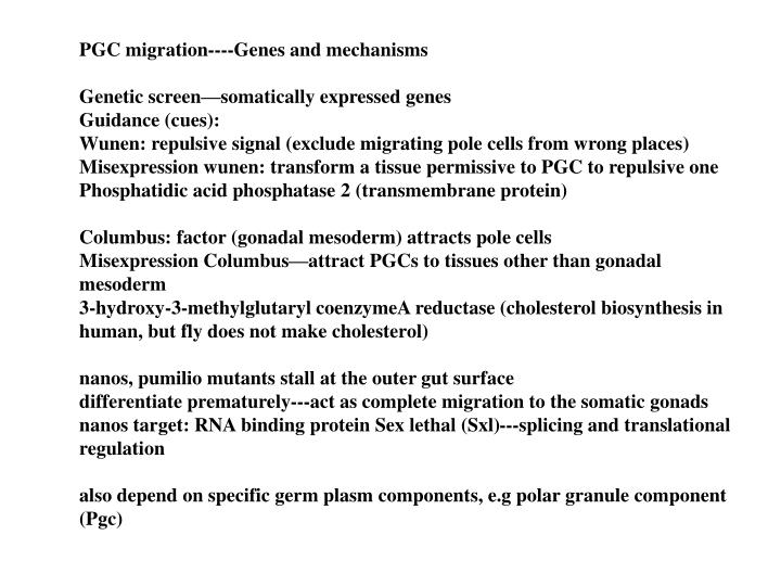 PGC migration----Genes and mechanisms