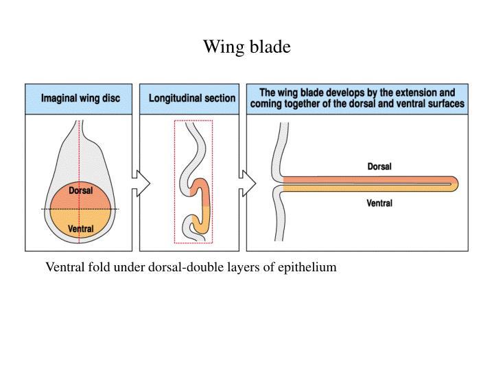 Wing blade