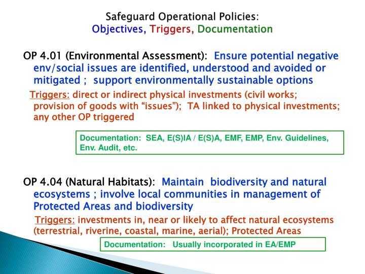 Safeguard Operational Policies: