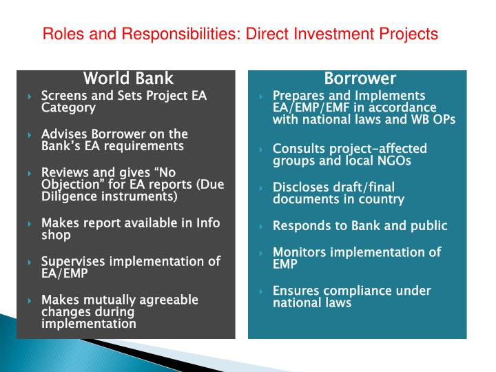 Roles and Responsibilities: Direct Investment Projects