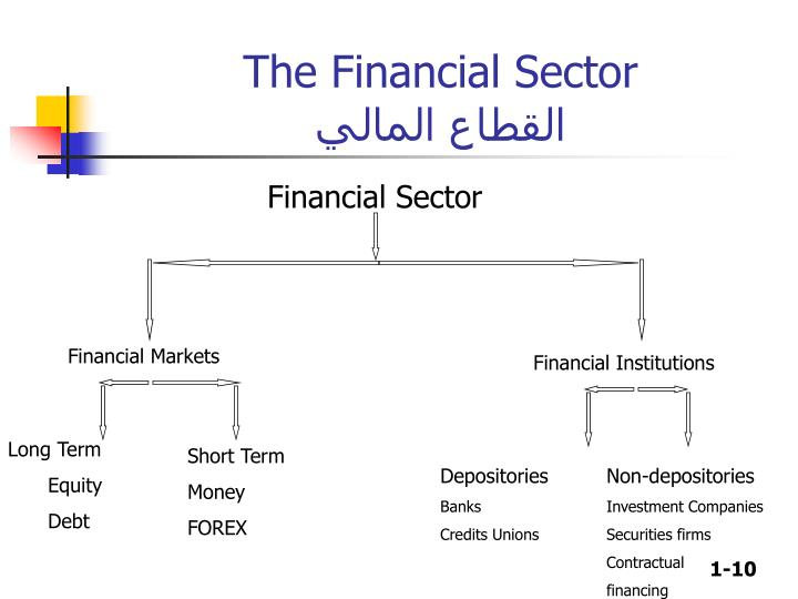The Financial Sector
