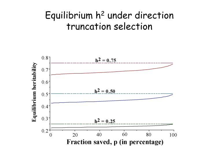 Equilibrium h