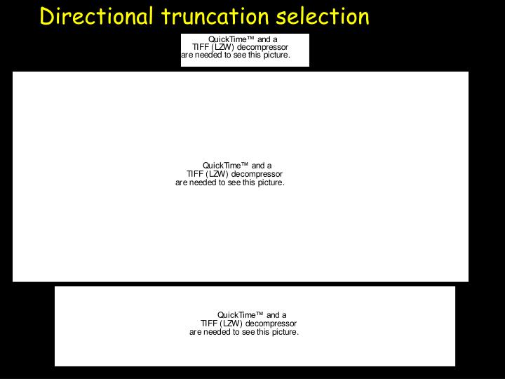Directional truncation selection