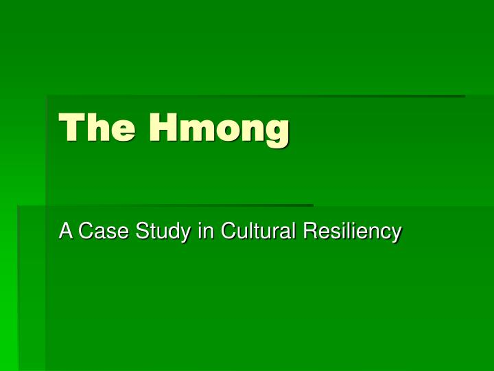the hmong used and abused essay