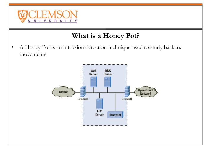 A Honey Pot is an intrusion detection technique used to study hackers movements